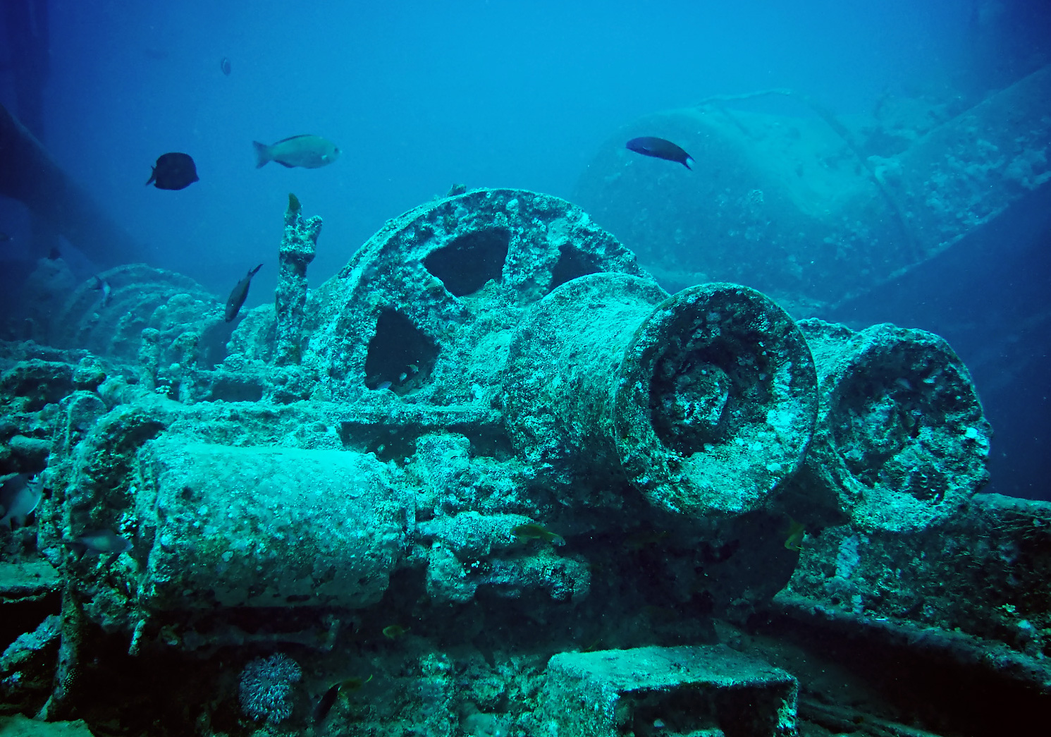 Thistlegorm_train_parts_minus_red_edit.jpg