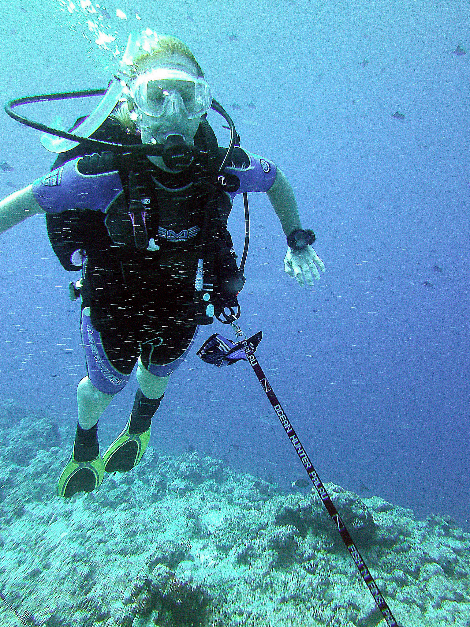 Reef_Hook.jpg