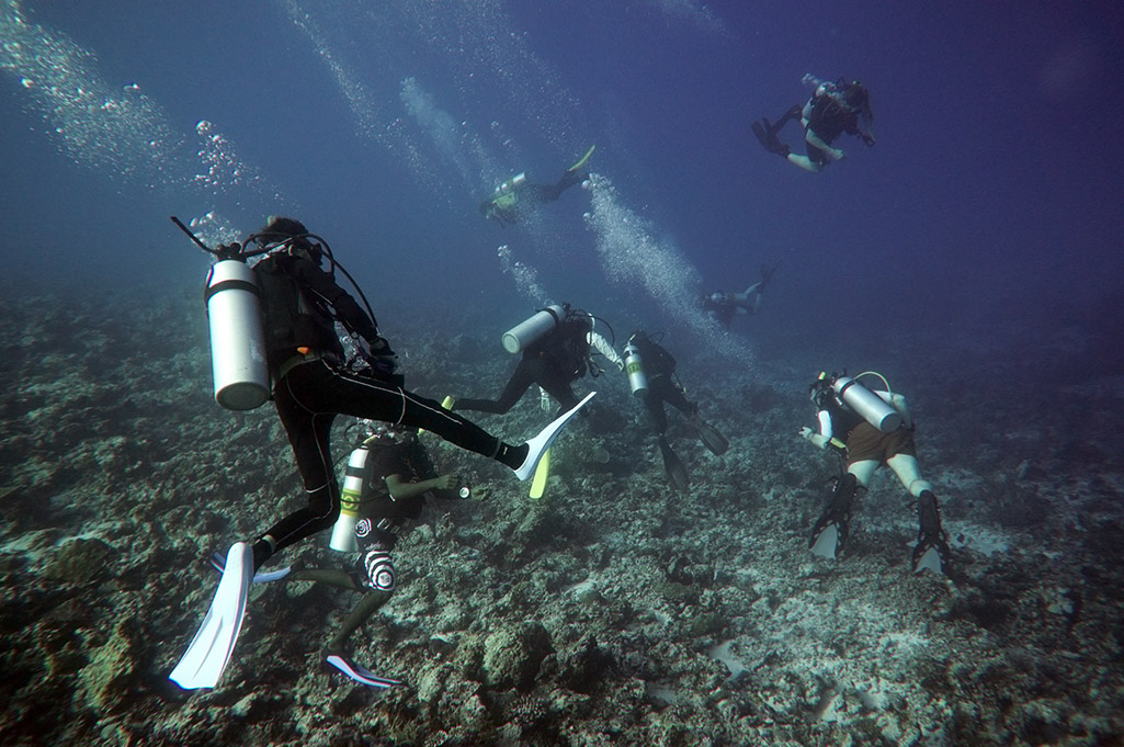 Drift_Diving_1.jpg