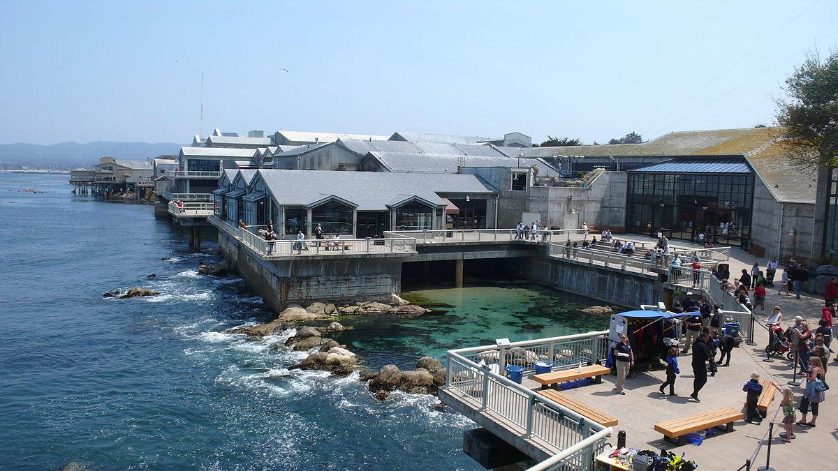 1200px-MontereyBayAquariumBackview.jpg