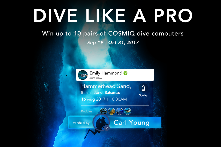 Hey Pros, Here's a Campaign Just for You! Log Online and Win