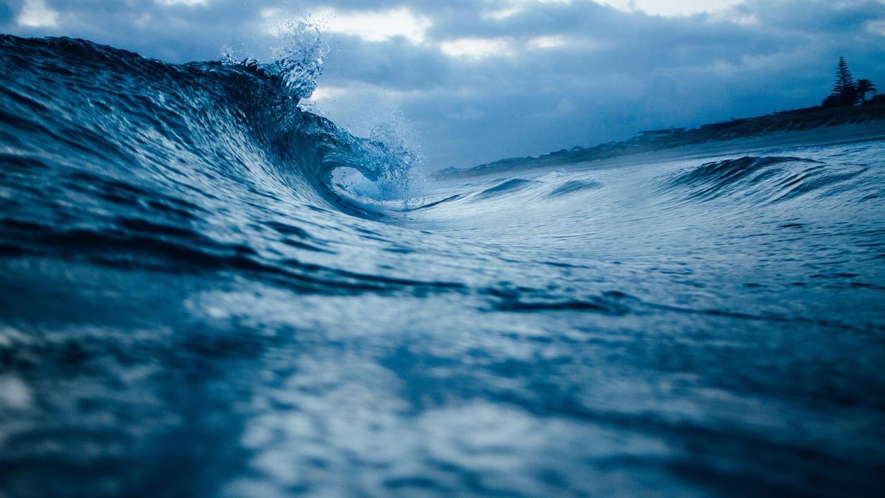 Ocean_Treaty_3.jpg