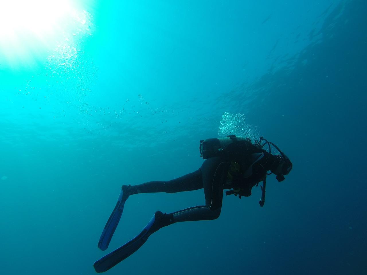 diver-752667_1280.jpg