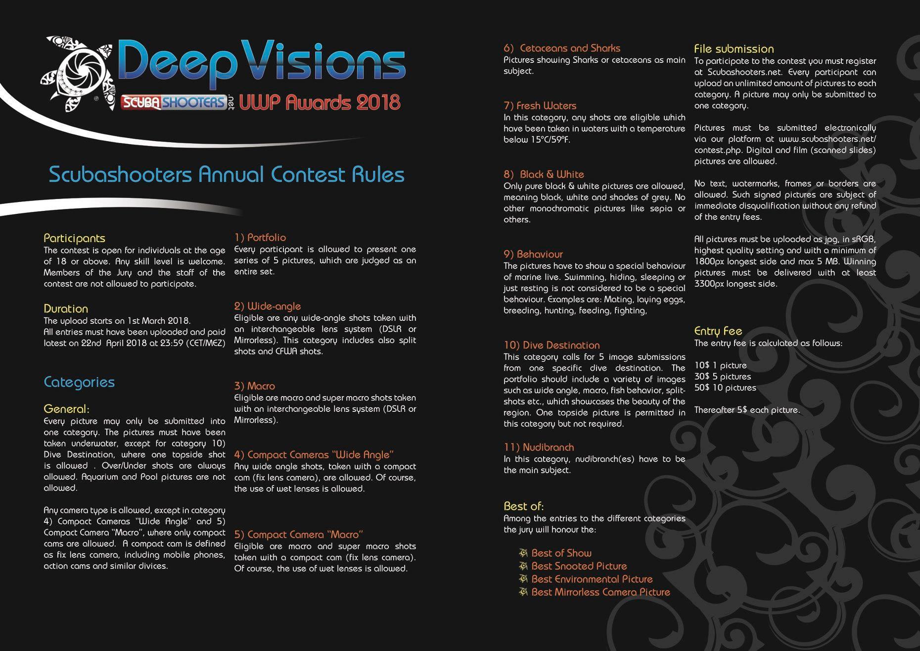deepvisions2.jpg