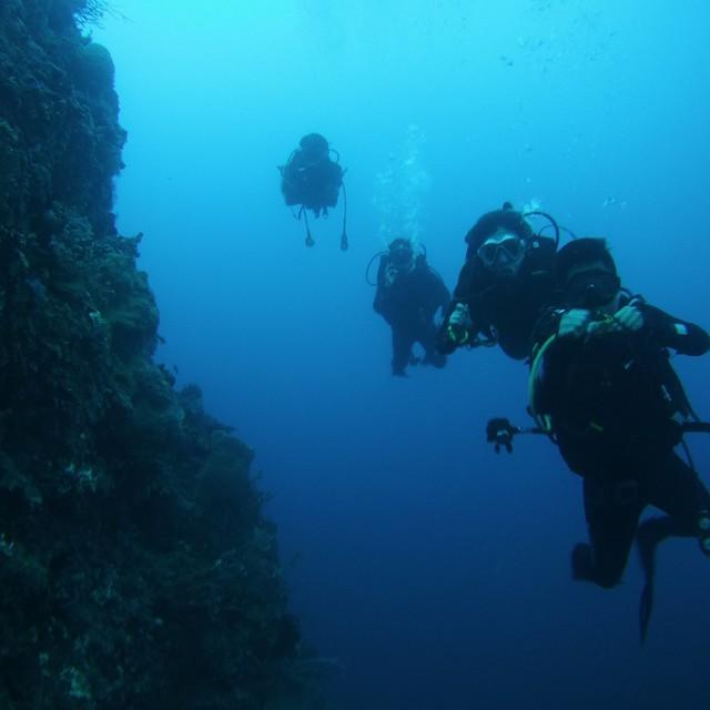 Bajo Spot (wall), Sula, North Maluku