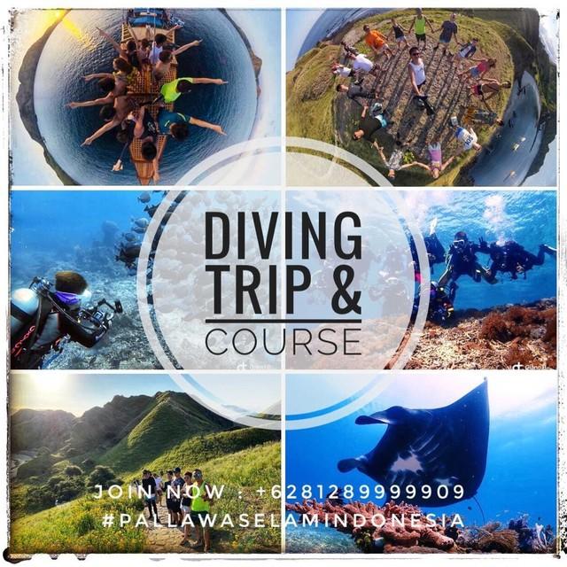 dive trip  • • • • #kodingarengkekeisland #dancingwind #pallawaselamindonesia #indonesia  #makassar  #island  #indonesiatrip  #wisata #phinisi  #boatrip  #boat  #boatfishing  #boatdive